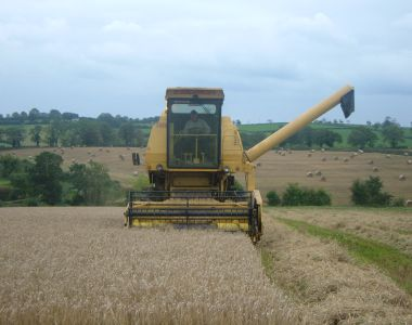 Northern Ireland Farm Quality Assured Cereals Scheme